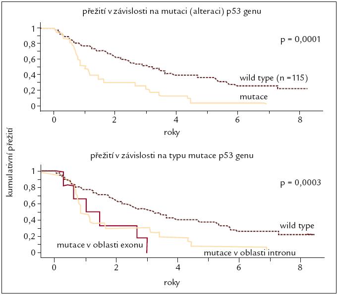 Vliv mutace genu p53 na přežití u pacientů s B-CLL [40].