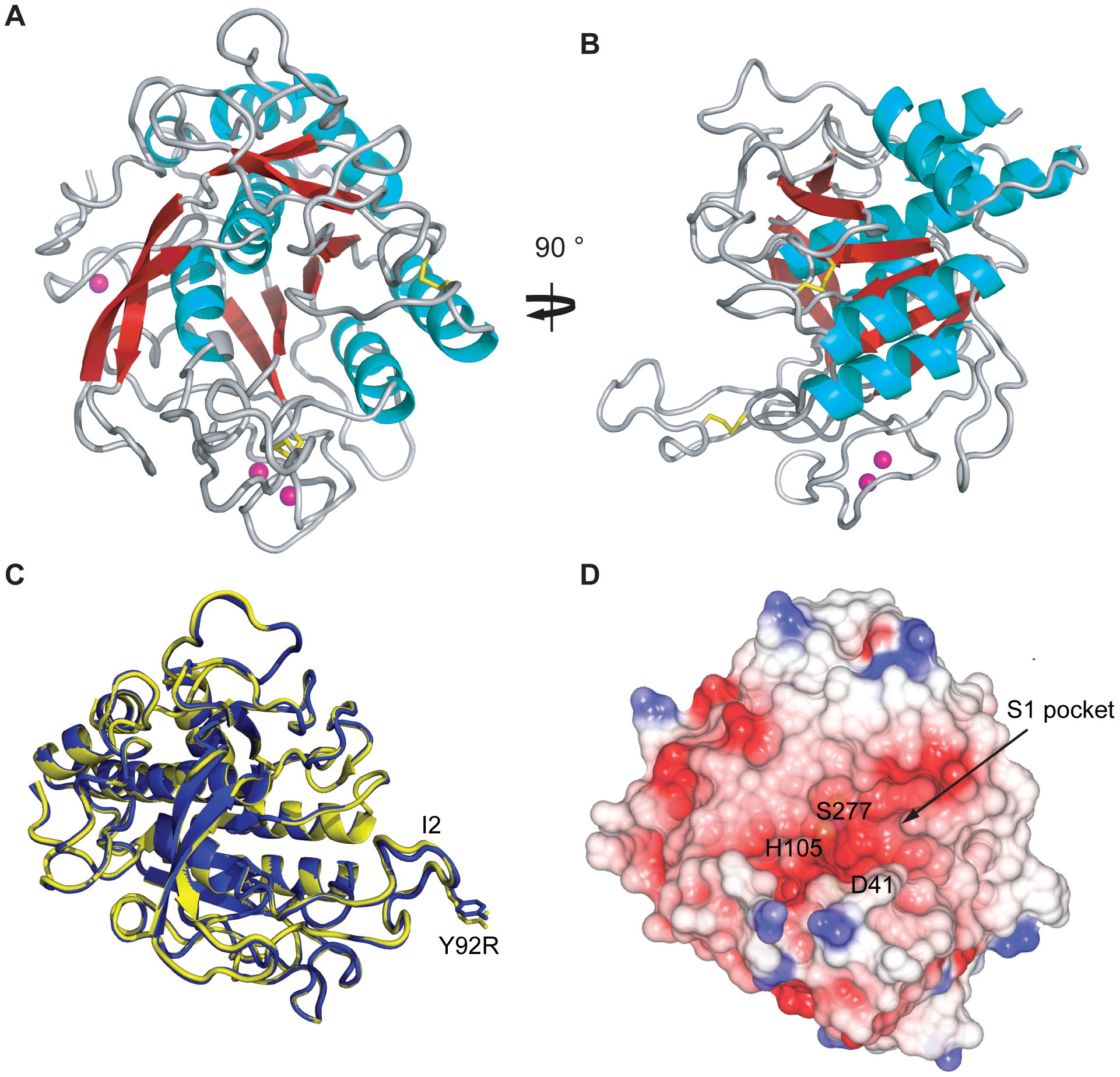 Crystal structure of AprV2.