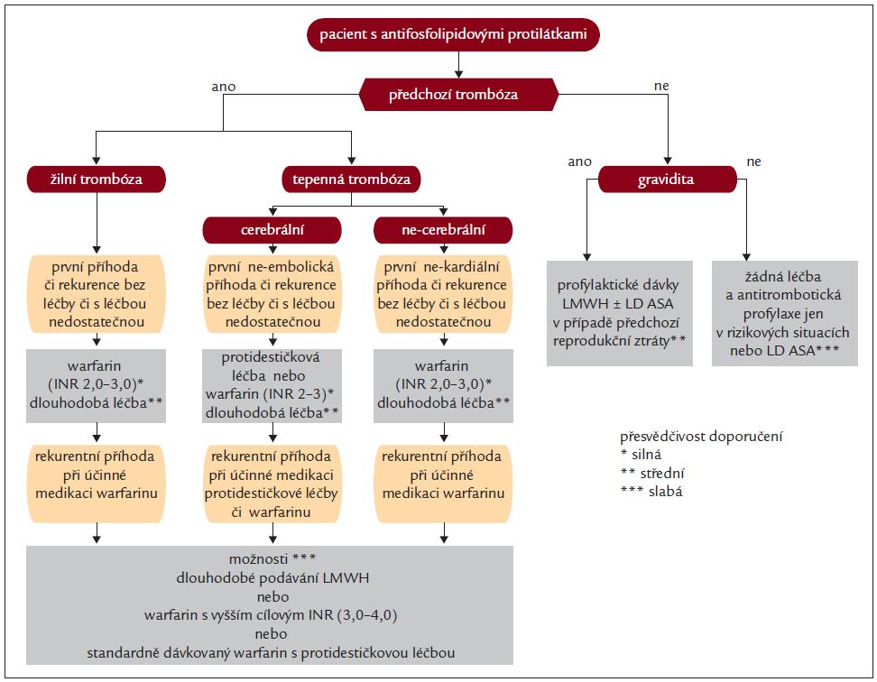 Schéma 1. Stategie antikoagulační léčby, upraveno dle [39,40].