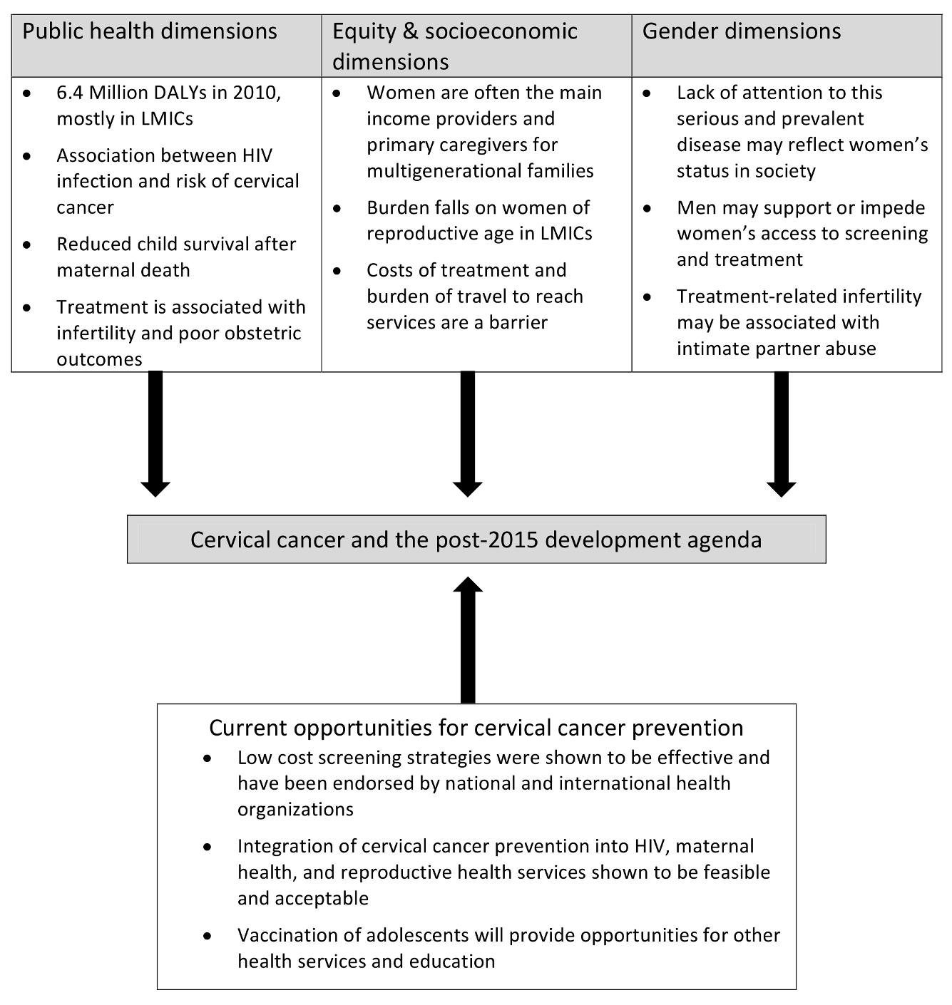 Cervical cancer and the post-2015 agenda: a multidimensional framework.