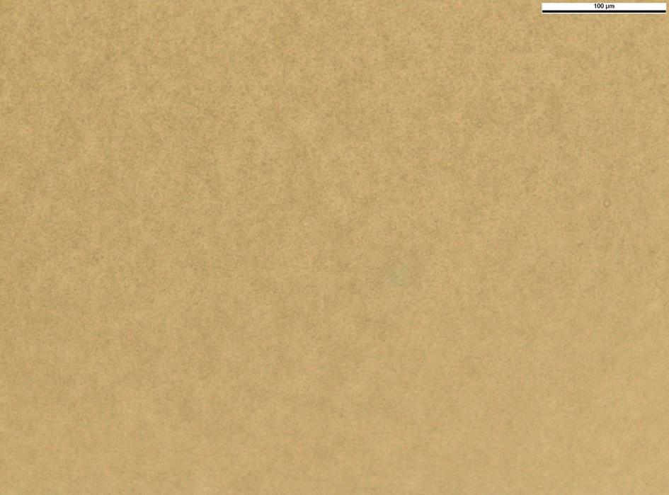 EMLA krém (90. den, zvětšení 400x)