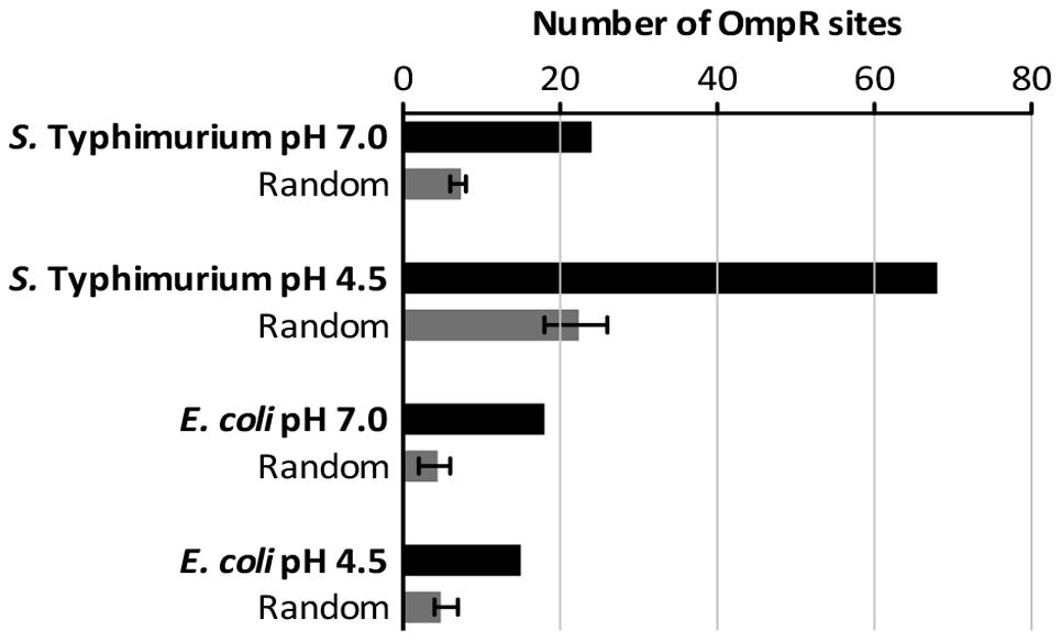 The number of high-scoring OmpR sites identified within the ChIP datasets.