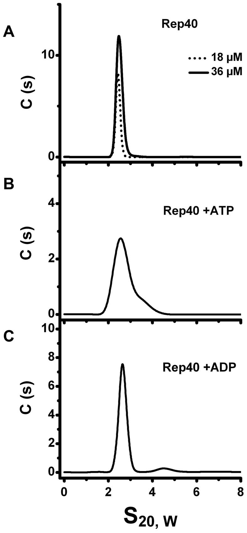 Sedimentation velocity profiles of Re40.