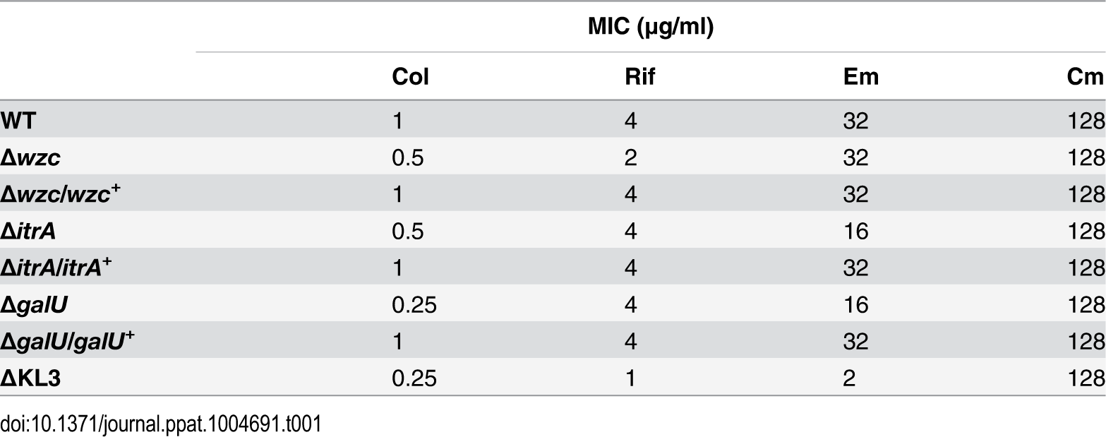 """Minimal Inhibitory Concentrations (MICs) determined from antibiotic resistance assays (<em class=""""ref"""">Fig. 3</em>)."""