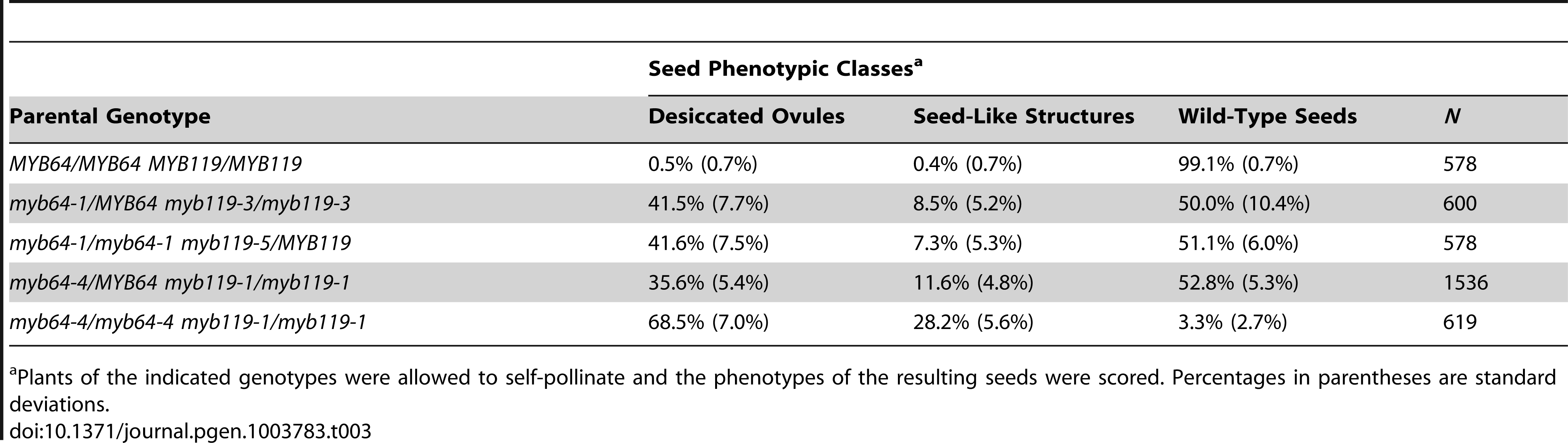 Analysis of <i>myb64 myb119</i> seed phenotypes.