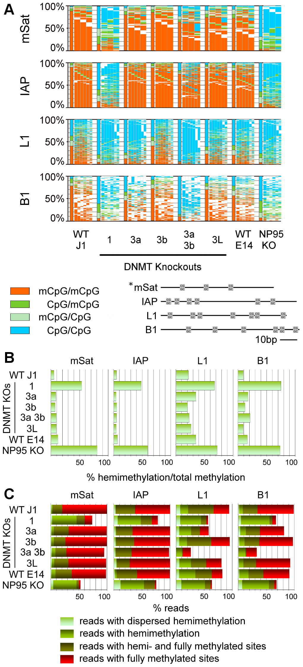 Methylation pattern of CpG dyads at repetitive elements in ESCs depleted for Dnmts or factors of the methylation machinery.