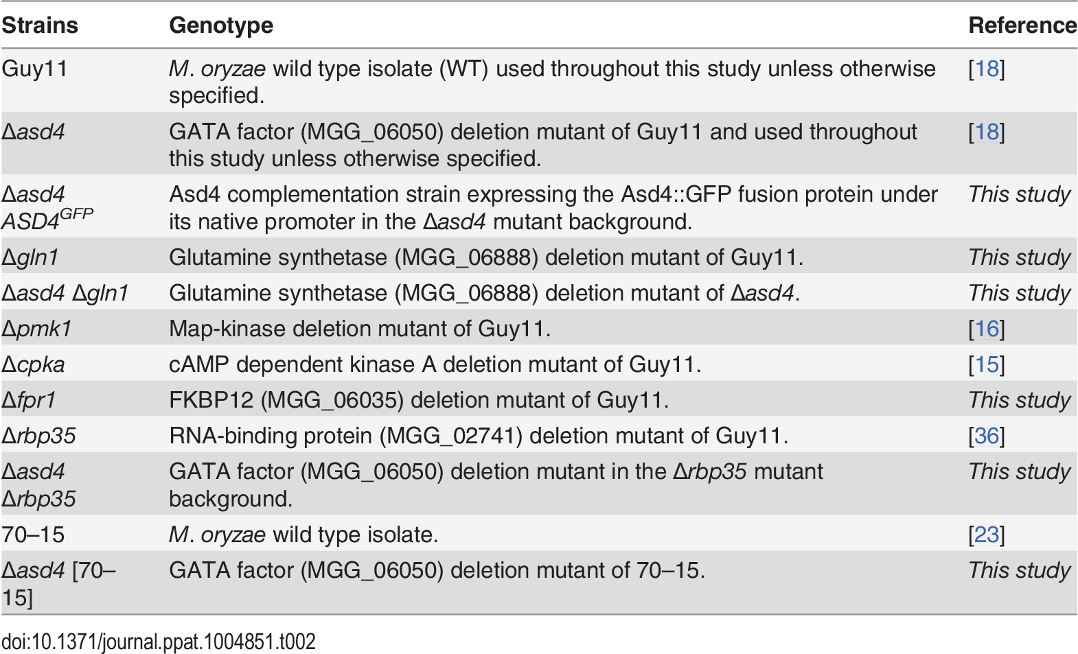 <i>Magnaporthe oryzae</i> strains used in this study.