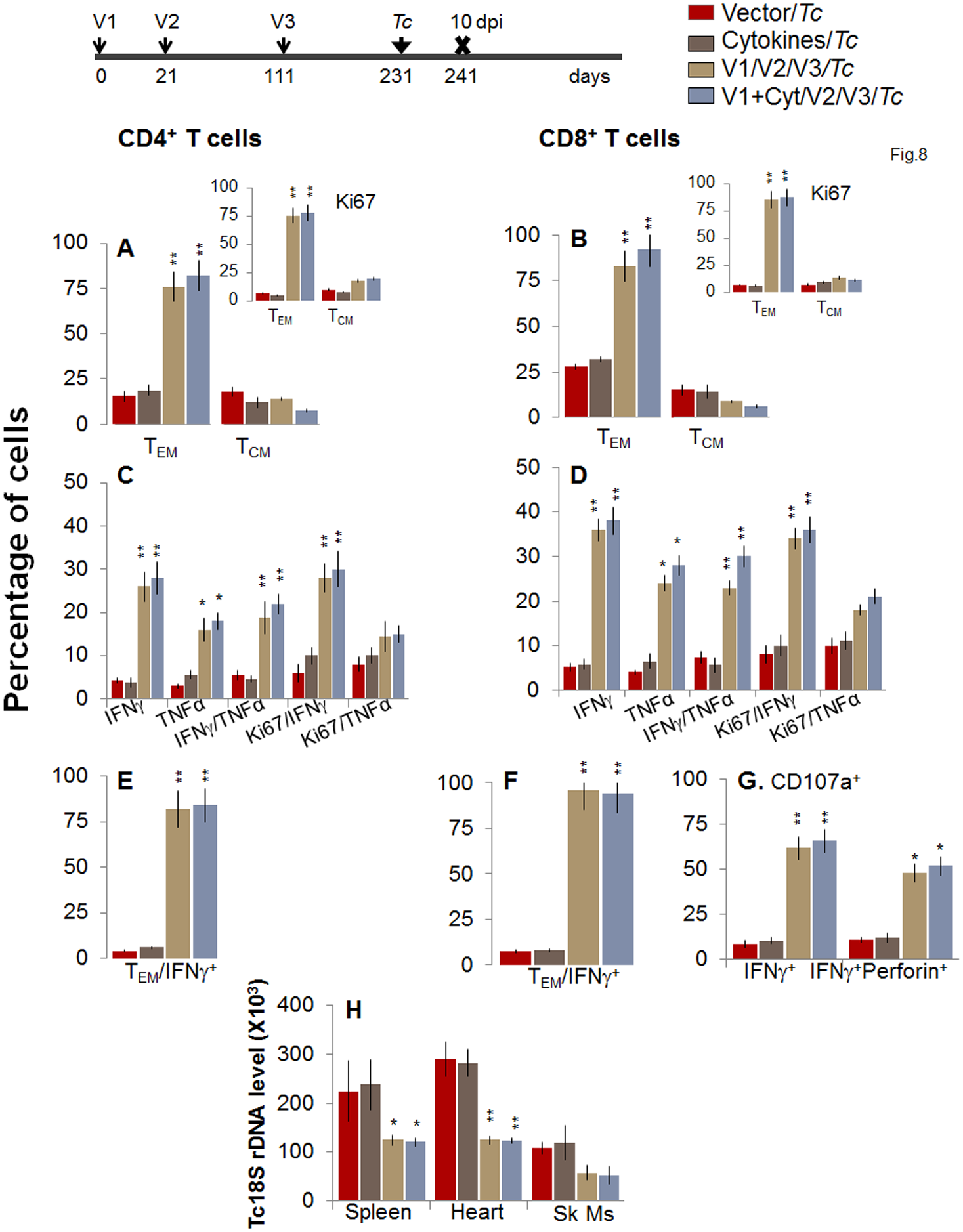 Booster-immunized mice expand the recall T cell response capable of controlling <i>T</i>. <i>cruzi</i> infection at 120 days post bi.