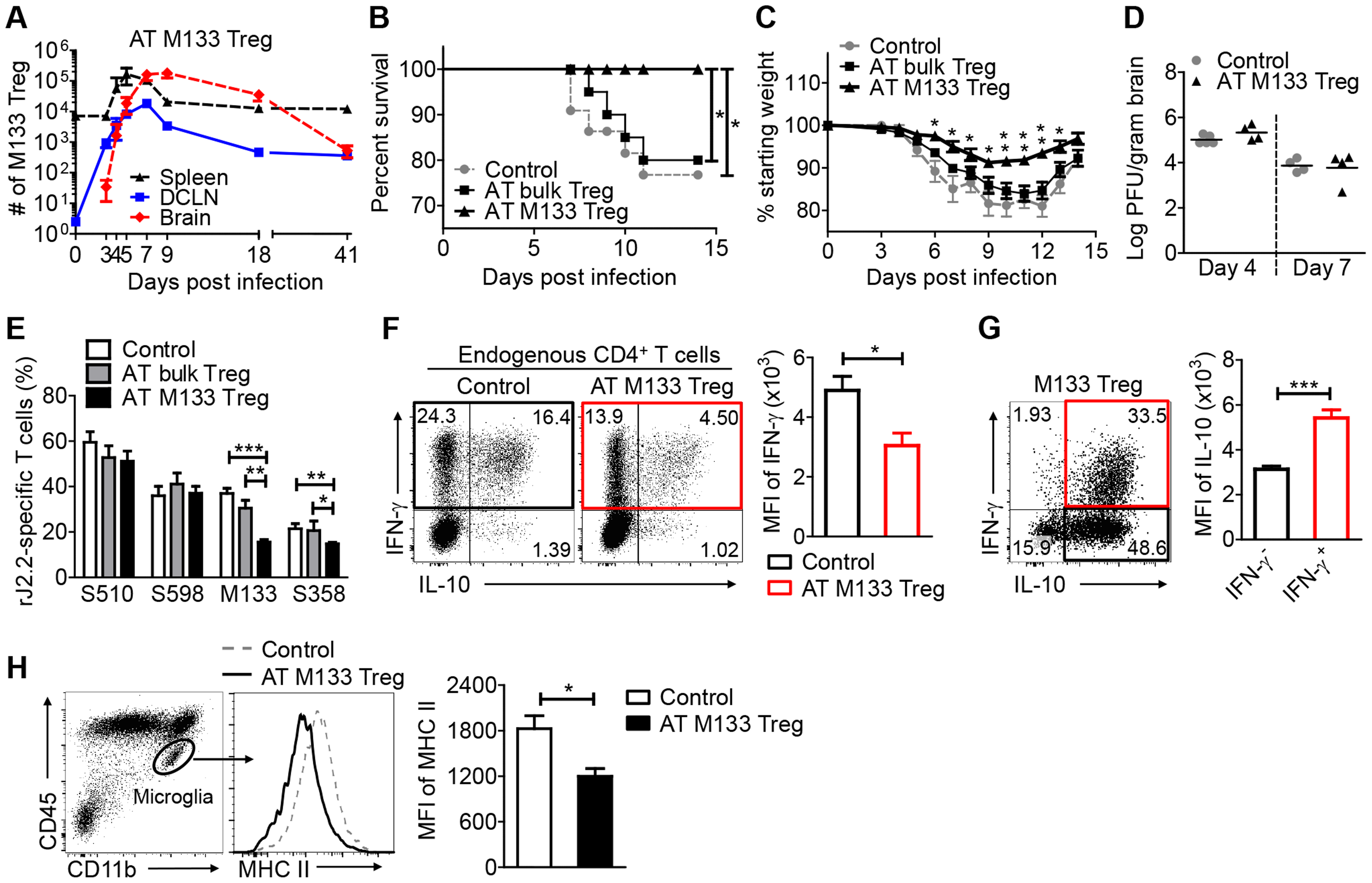 Transferred M133 Tregs enhance survival and diminish the M133 Tconv immune response in the brain.