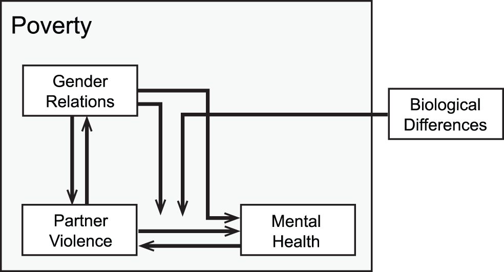 Conceptual framework depicting connections between intimate partner violence and mental health, in the context of poverty, gender relations, and biological differences between men and women.