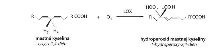 Hydroperoxidácia (1Z,4Z)-penta-1,4-diénovej štrukturálnej jednotky v alifatickom reťazci MK (R,R': alifatický zvyšok, S,R: stereošpecifické označenie)