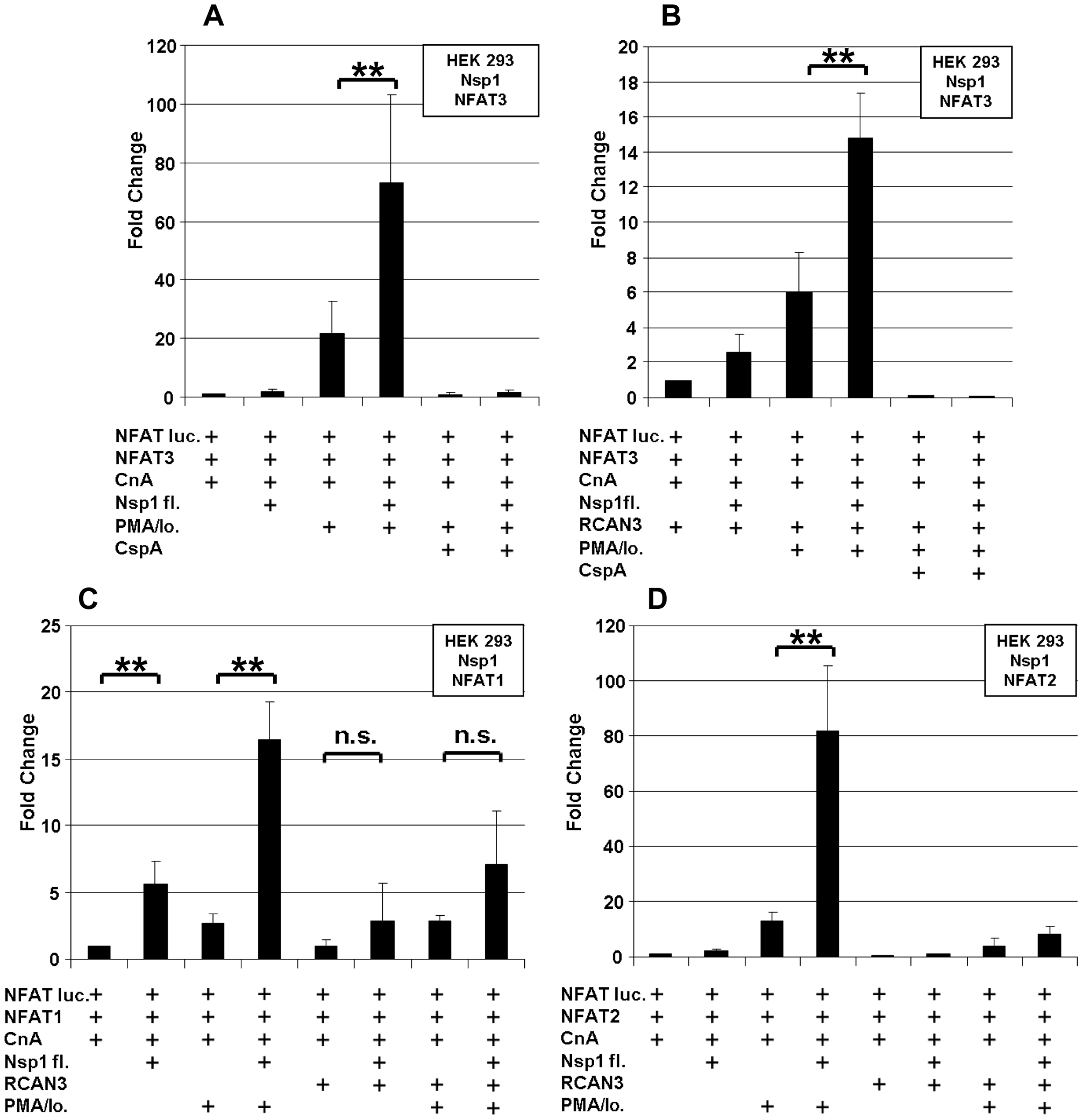 SARS-CoV Nsp1 full length (Nsp1fl) induces NFAT-regulated gene expression <i>in vitro</i> independently of the NFAT molecular species, and the calcipressin RCAN3 extenuates the effect.