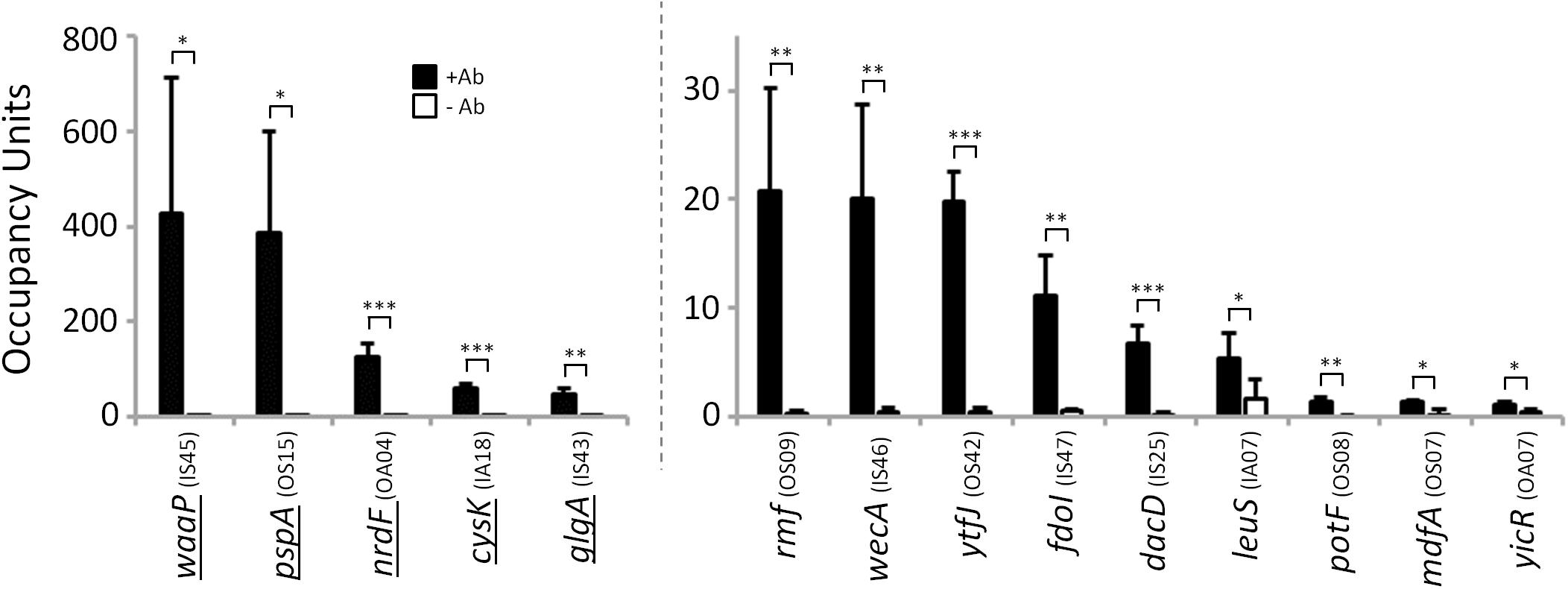 σ<sup>54</sup> binds conserved sites in <i>Salmonella enterica</i>.