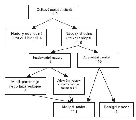 Rozdělení pacientek v prospektivní studii