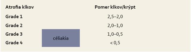 Grading atrofie klkov podľa Druta [18]. Tab. 2. Grading of villous atrophy according to Drut [18].