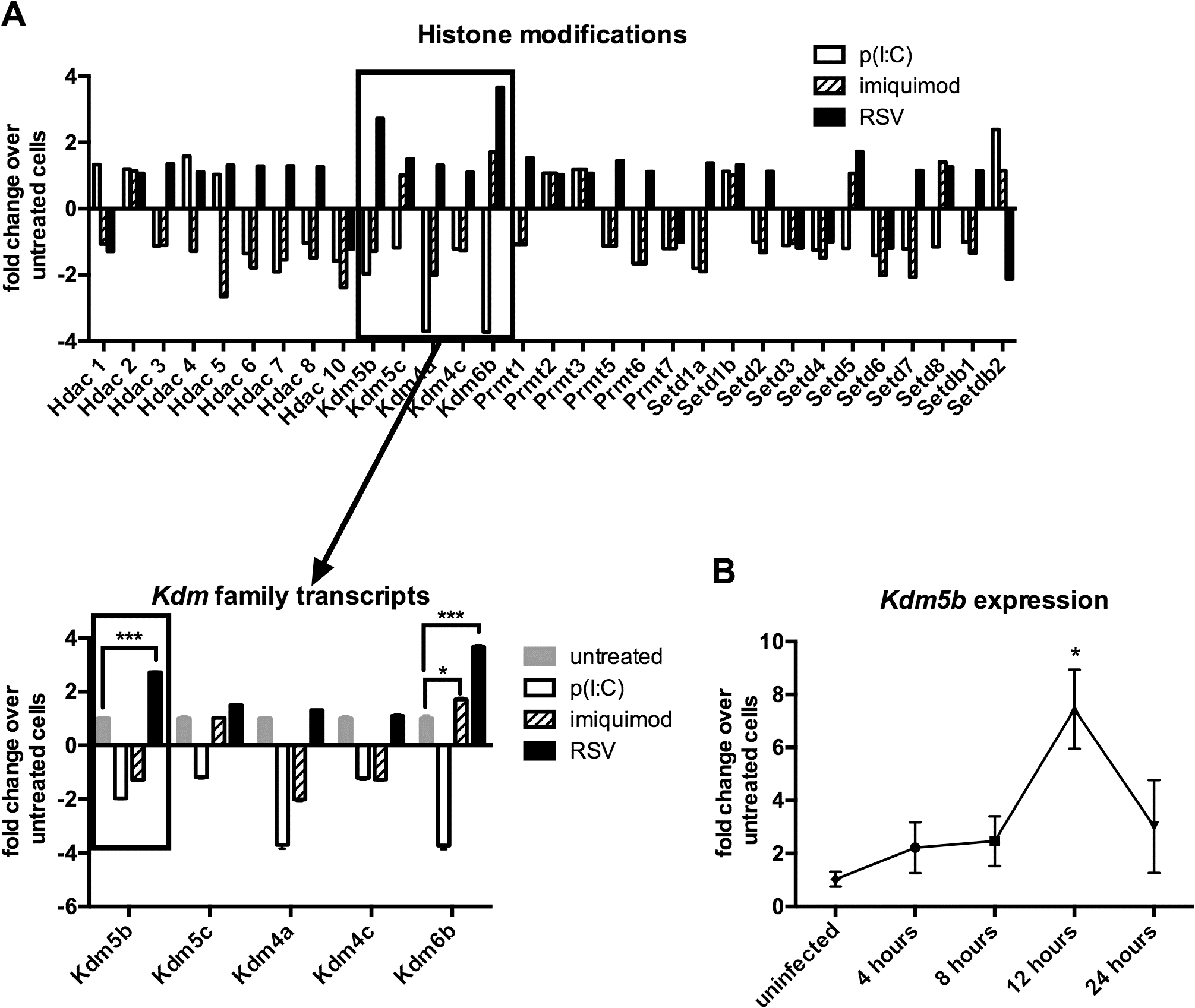 <i>Kdm5b</i> expression increases following infection of BMDCs with RSV.