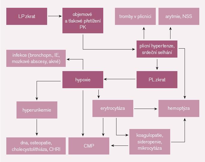 Patofyziologie.