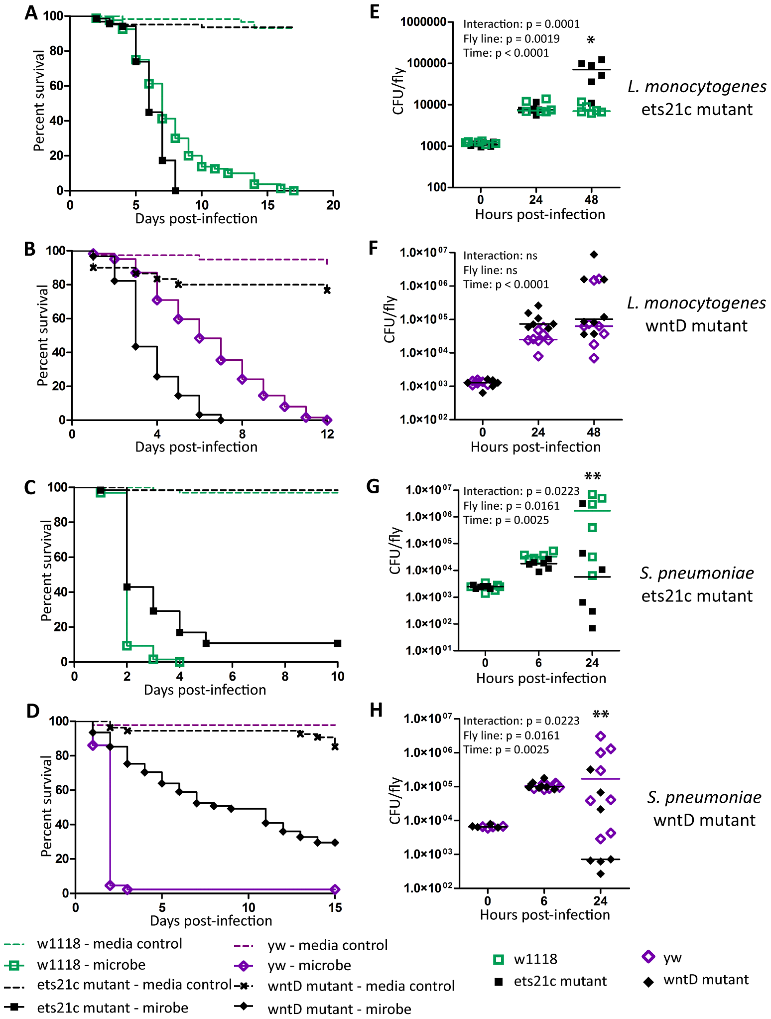 Ets21c and wntD similarly affect survival to <i>L. monocytogenes</i> and <i>S. pneumoniae.</i>