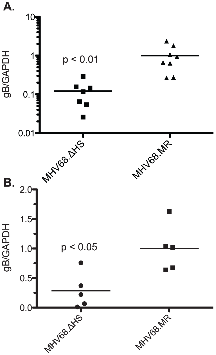 MHV68.ΔHS fails to traffic to the lymph system and establish latency.