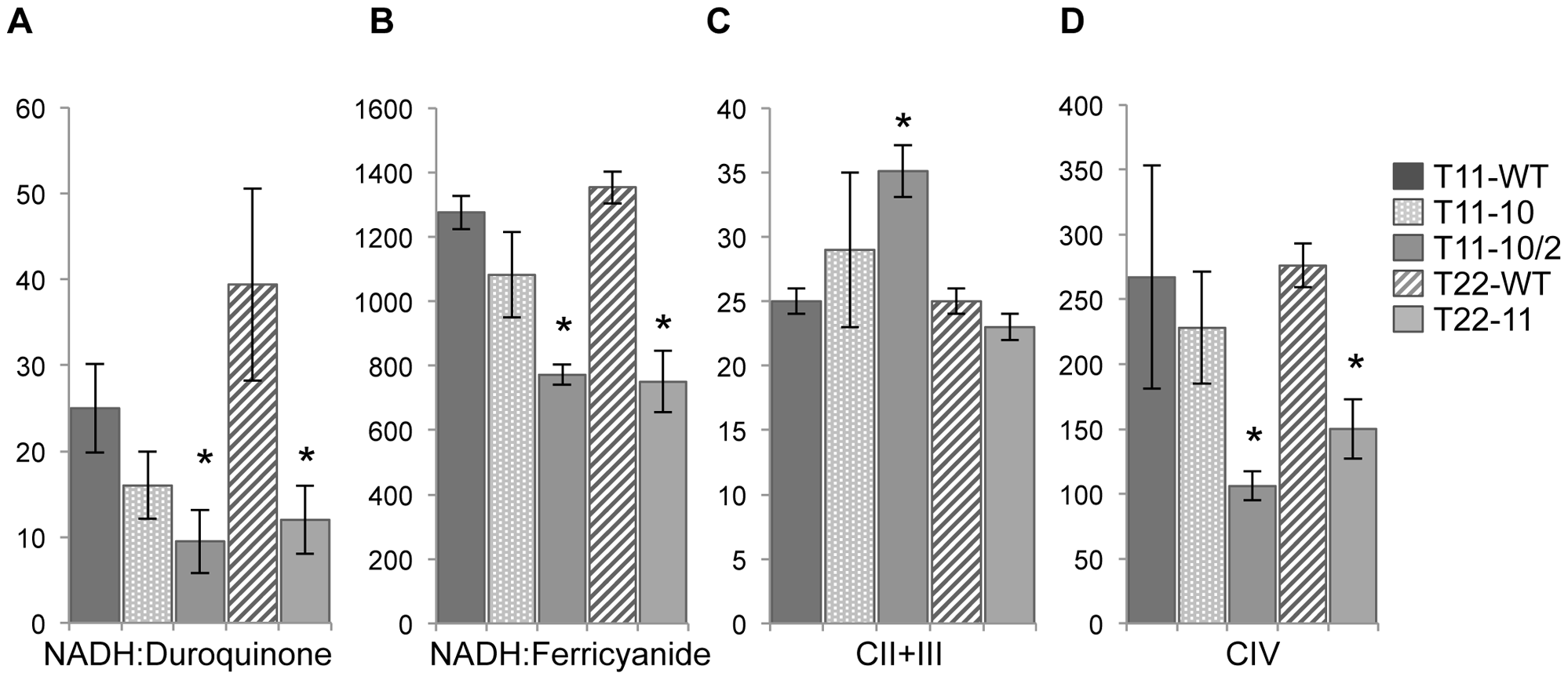 Respiratory enzyme activities of T11-10, T11-10/2, and T22-11 transformants.