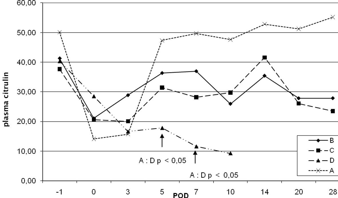 Dynamika plazmatické hladiny citrulinu v závislosti na pooperačních dnech (POD)