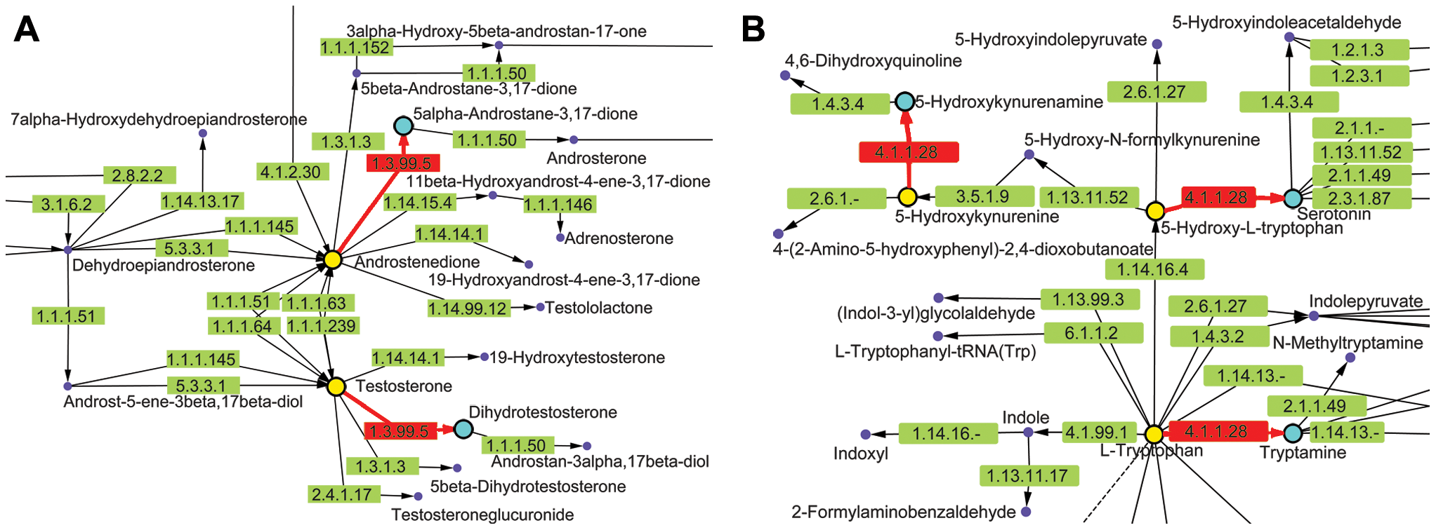 KEGG metabolic pathways containing chokepoint reactions for which a drug-like compound showed activity.