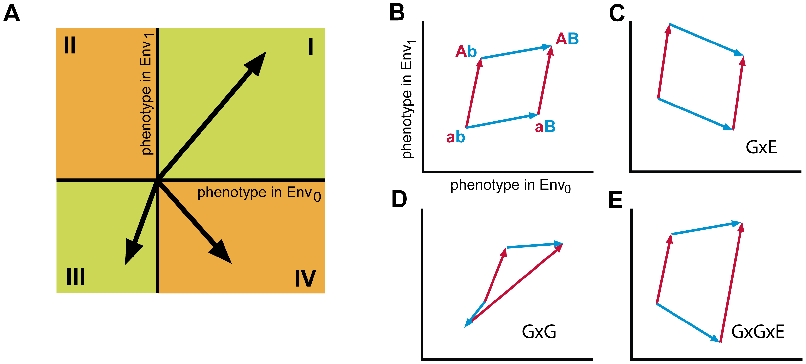 Analysis of higher order genotype-environment interactions.