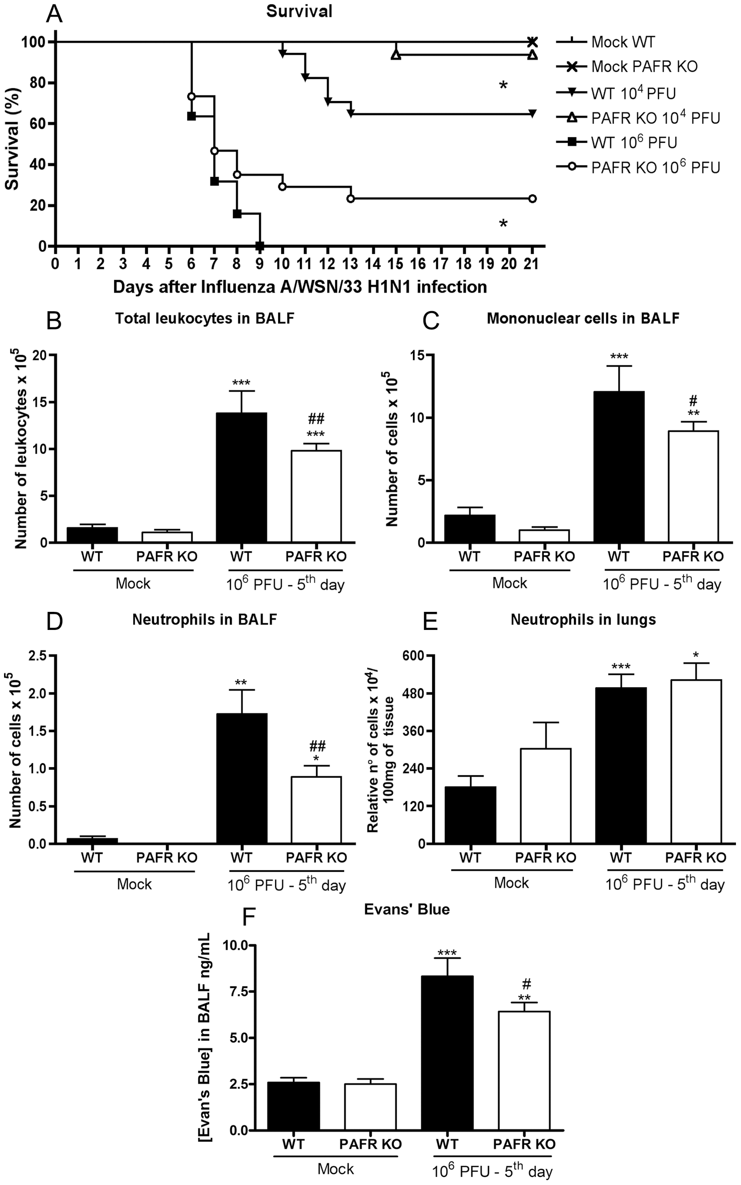 Lethal and mild Influenza A/WSN/33 H1N1 infections were less severe in PAFR KO deficient mice.