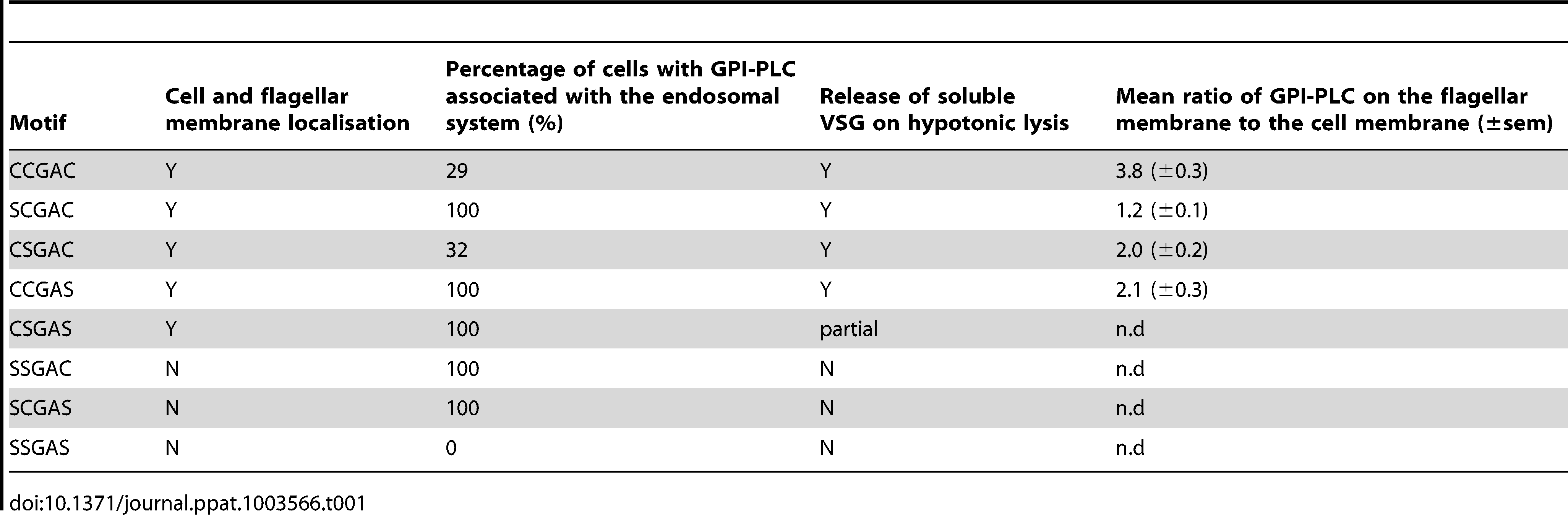 Summary of subcellular localisation and GPI-anchor hydrolysis for wild type and mutant GPI-PLC (n.d - no data).
