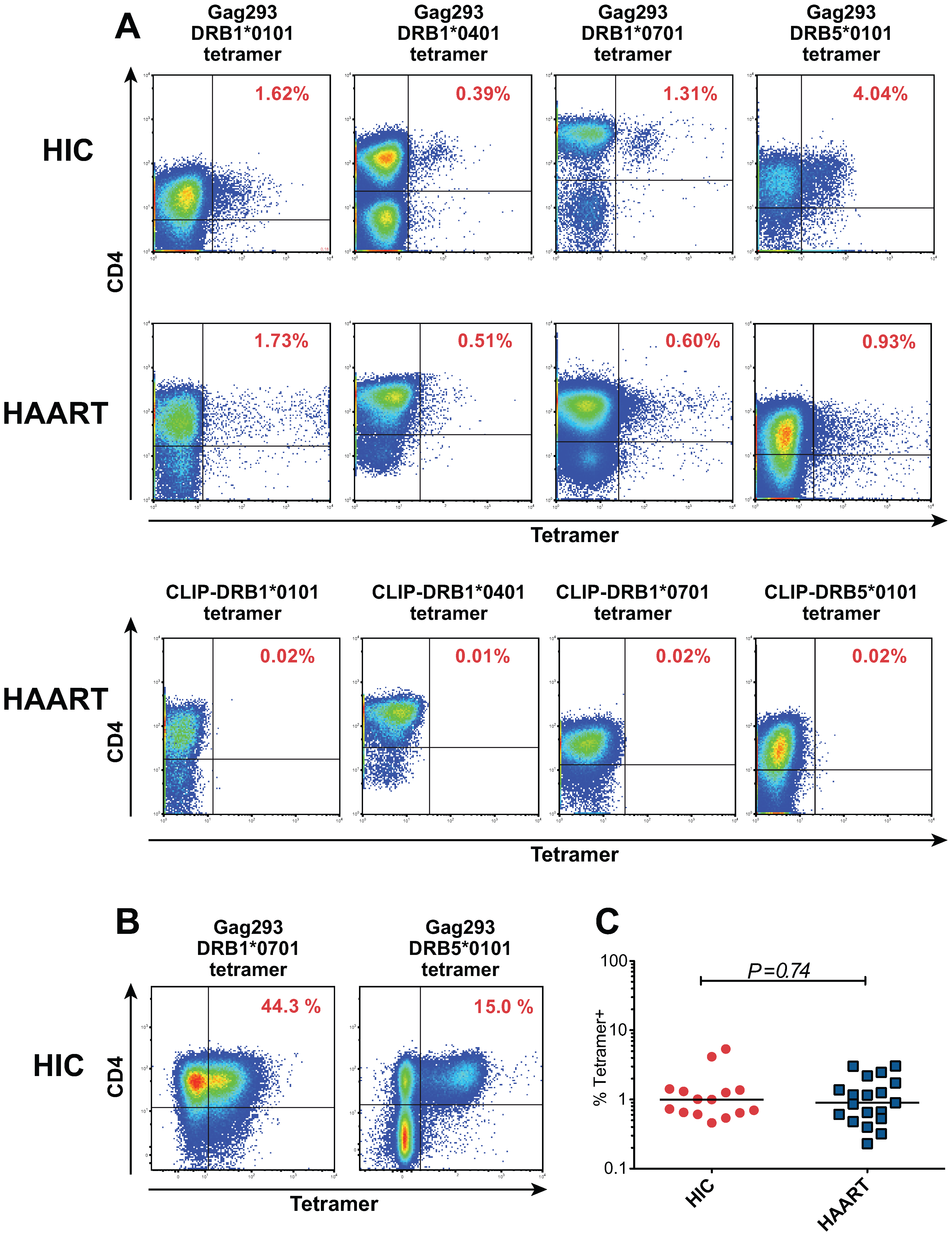 Characterization of HIV specific CD4+ T cells by MHC class II tetramer staining.
