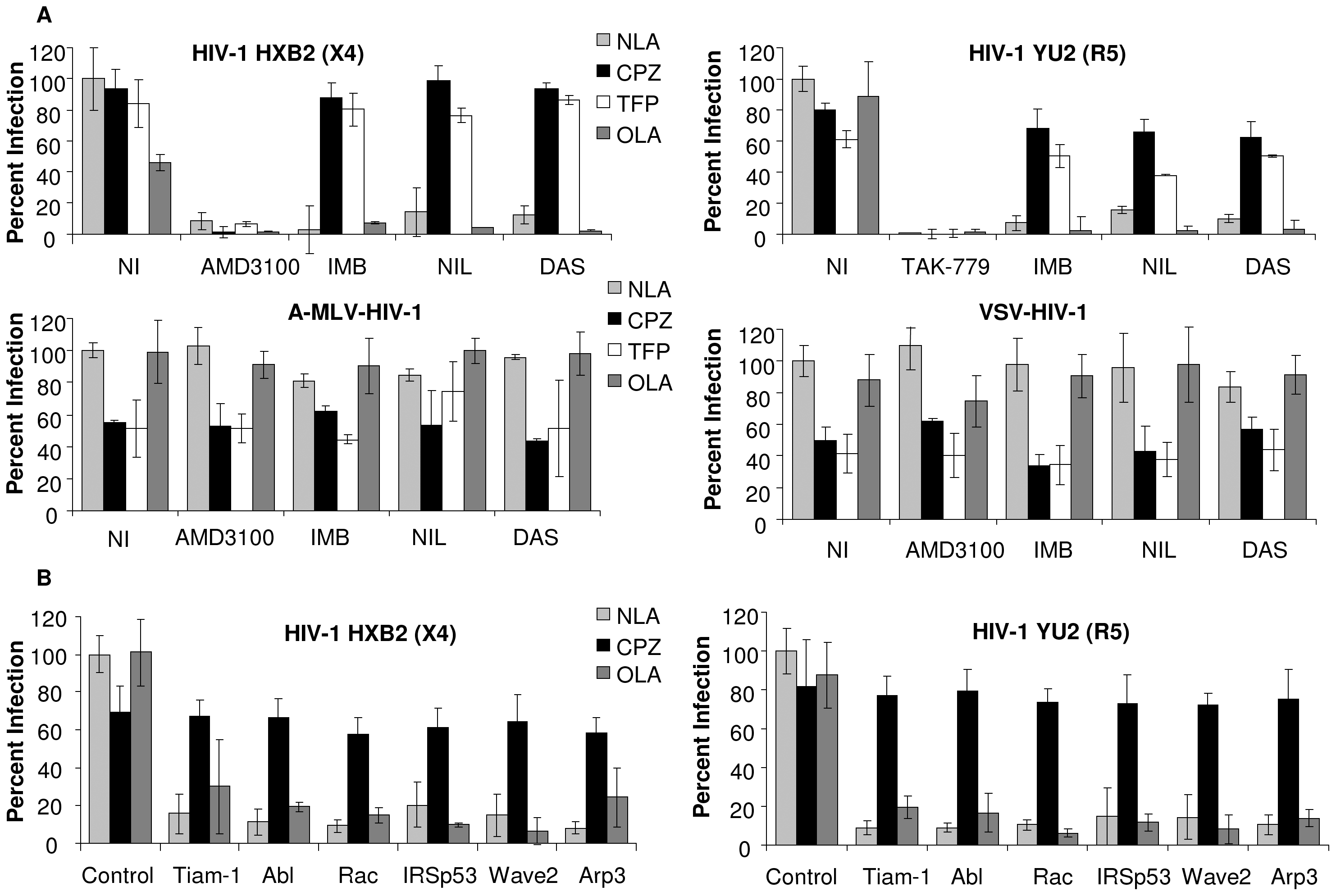 Abl kinase inhibitors and expression of siRNA targeted to the Wave2 complex block HIV-1 Env-mediated infection at a post-hemifusion step.
