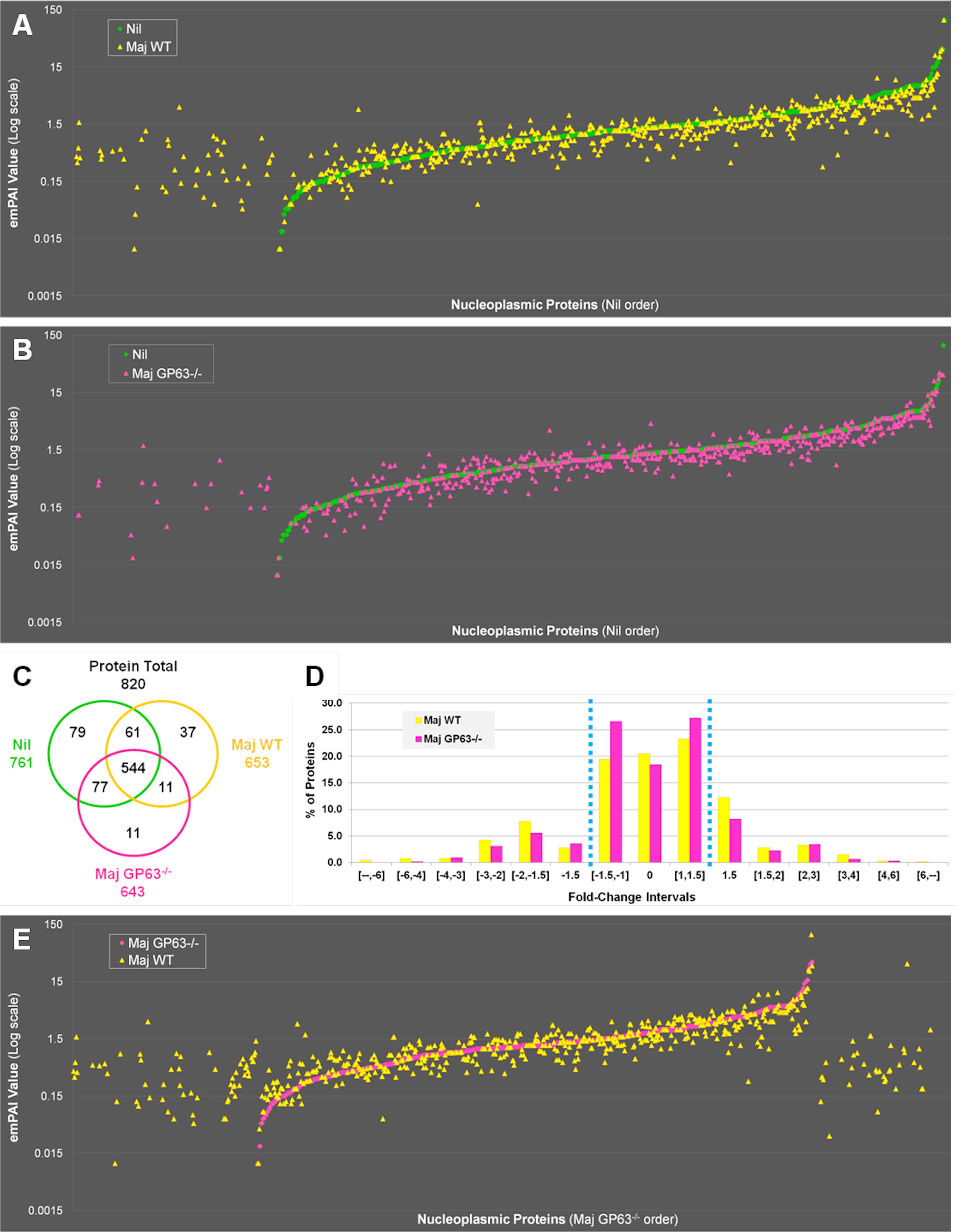 Quantitative proteomic analysis of macrophage nuclei after infection with <i>L</i>. <i>major WT</i> or <i>L</i>. <i>major</i> GP63<sup>-/-</sup>.