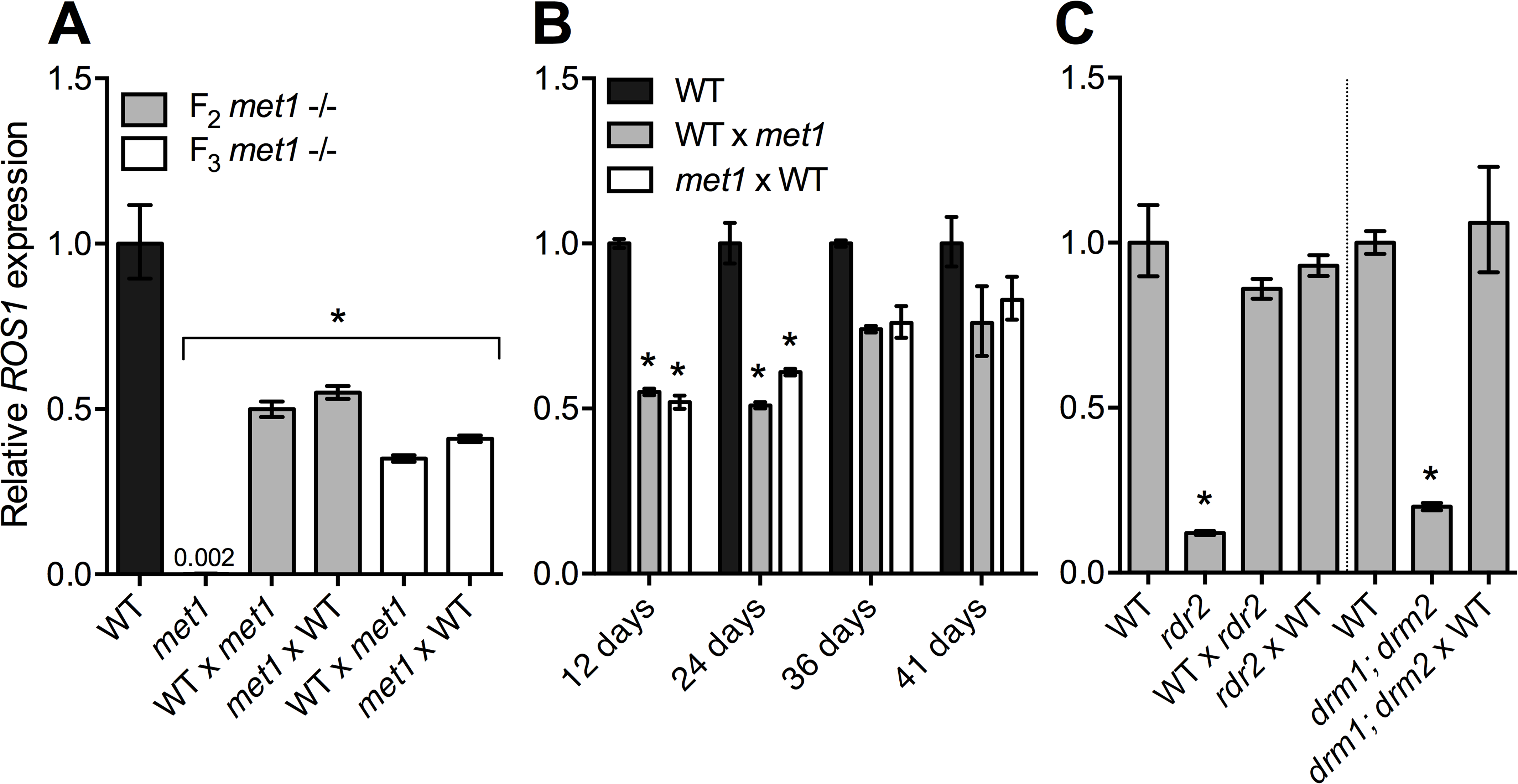 <i>ROS1</i> down-regulation in RdDM mutants is not heritable through meiosis.