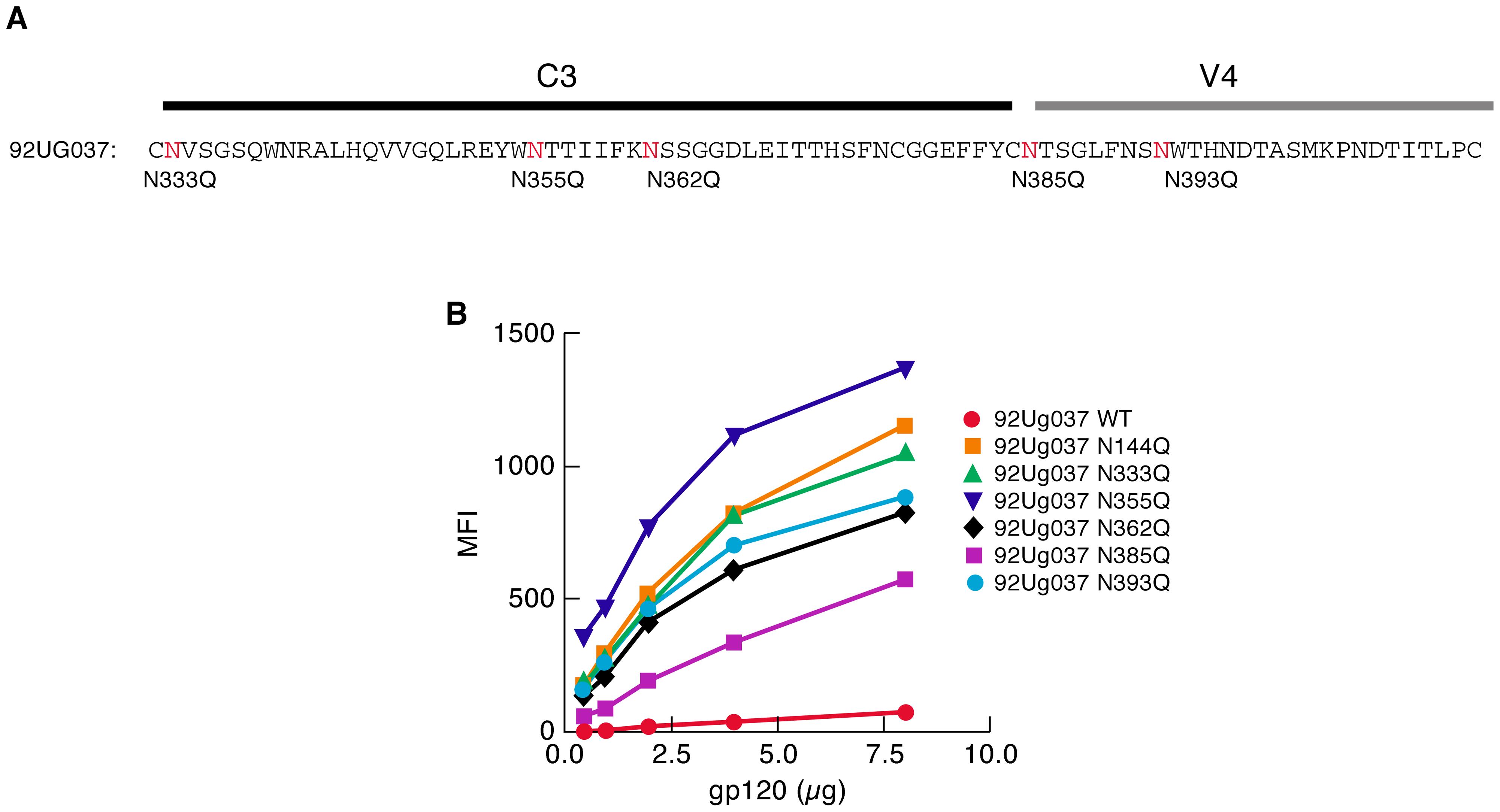 Effect of PNGΔs in the C3/V4 region on the α<sub>4</sub>β<sub>7</sub>-reactivity of 92Ug037 gp120.