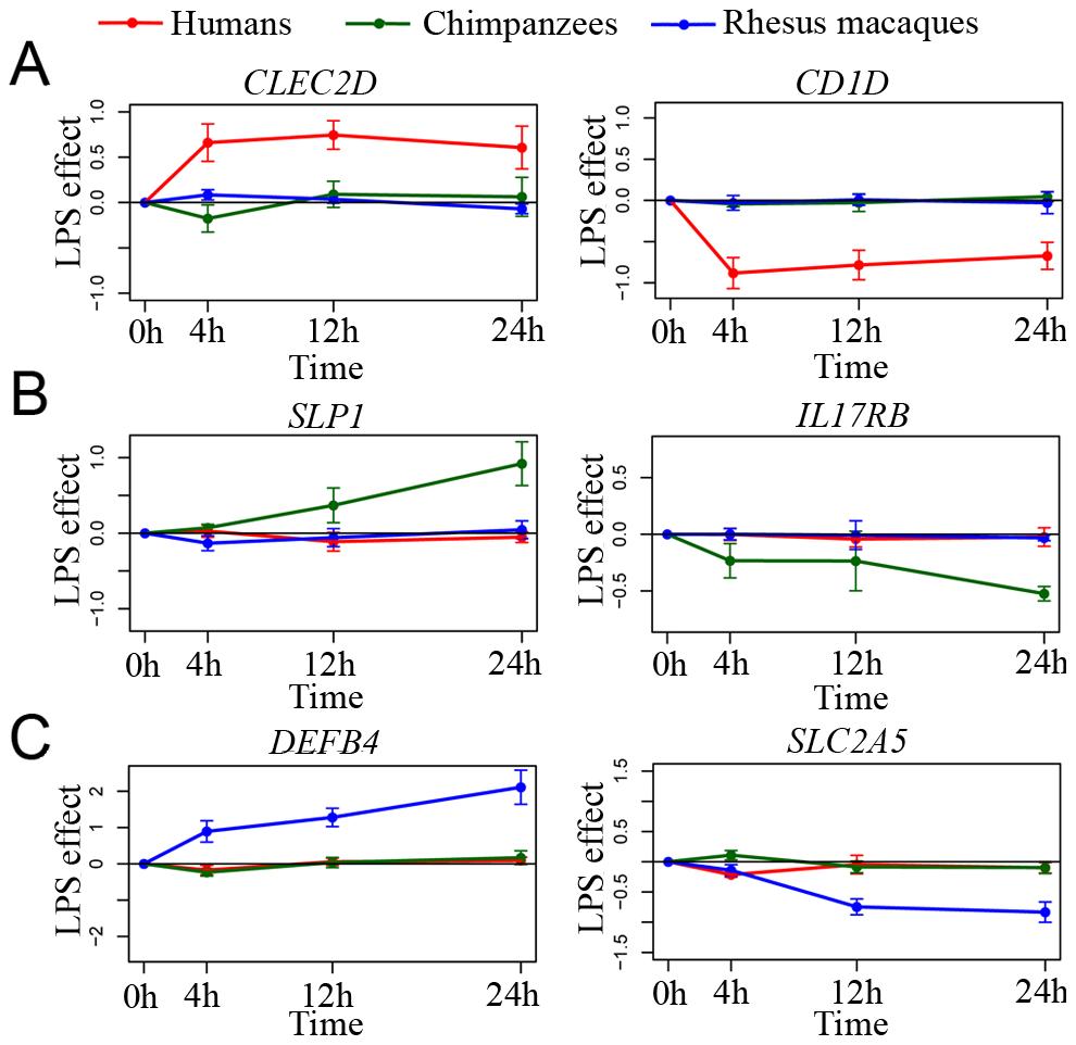 Species-specific responses to infection.