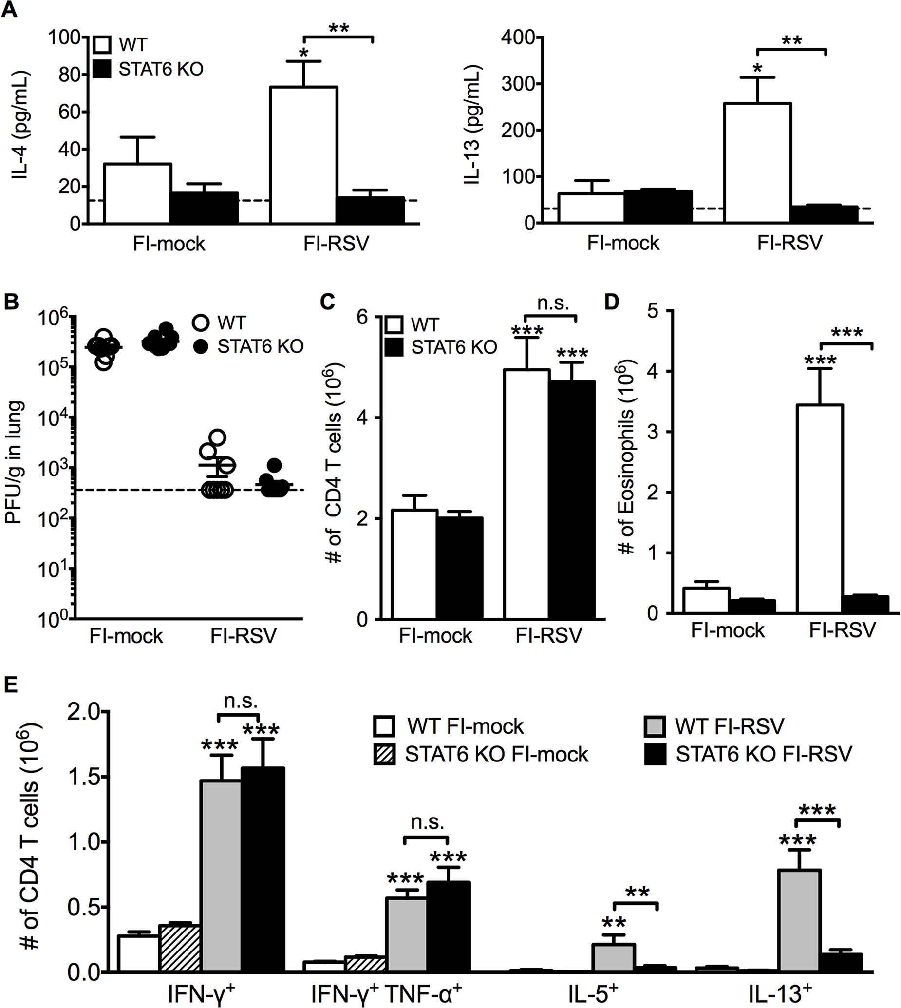 Th2-associated immune response is impaired in STAT6-deficient mice.