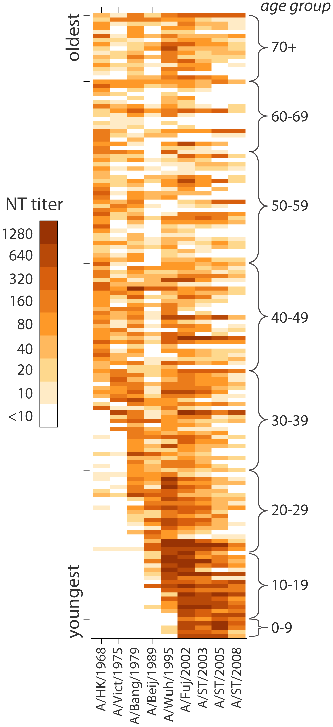 Heat-map of neutralization titers from all 151 individuals to each of the strains tested.