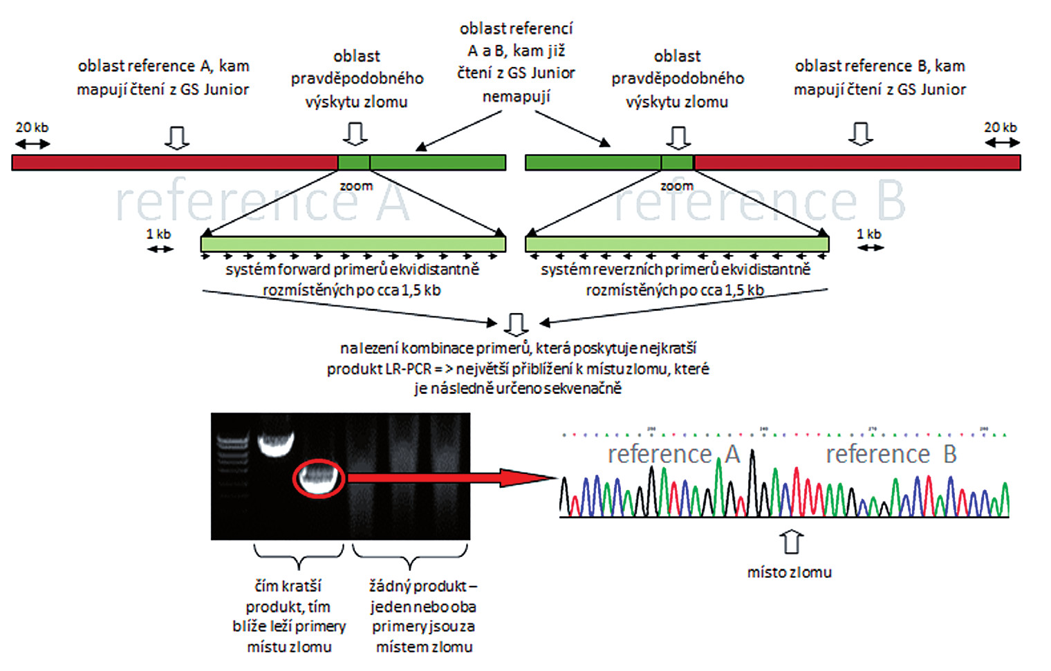 Schématické zobrazení postupu při identifikaci zlomového místa na derivovaném chromozomu.