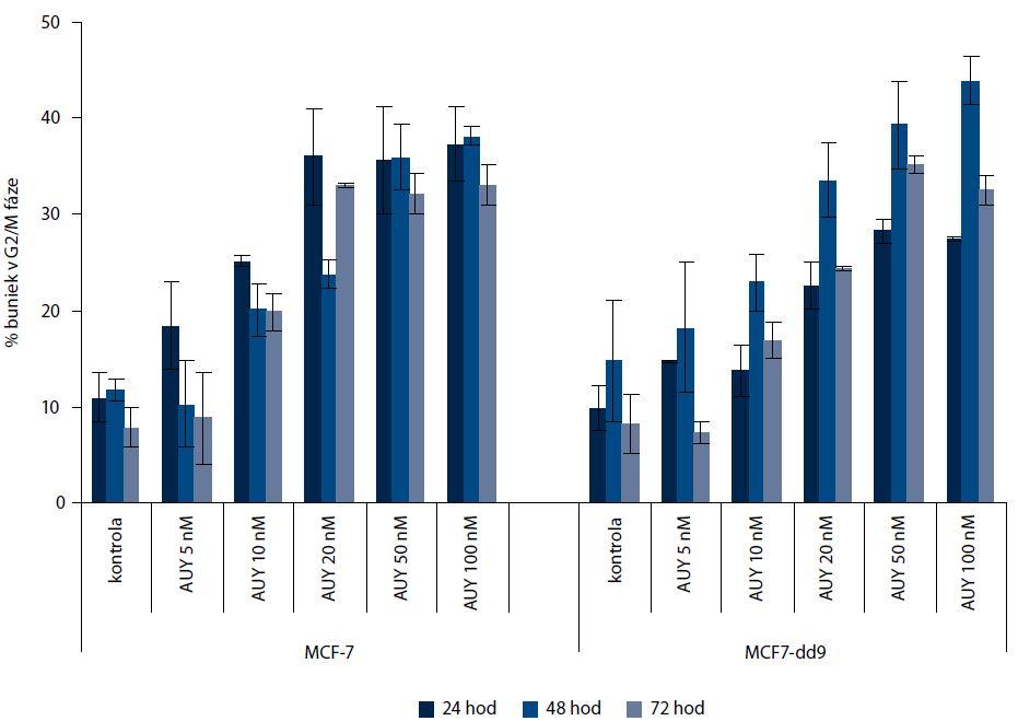 Efekt NVP-AUY922 v koncentráciách 5, 10, 20, 50 a 100 nM na zmenu G2/M fázy bunkového cyklu po ovplyvnení na dobu 24, 48 a 72 hod. Obe línie zaznamenali porovnateľný nárast hladiny G2/M fázy, jediný rozdiel bol pozorovaný vo vyššej miere G2/M bloku po 24 hod u línie MCF-7.