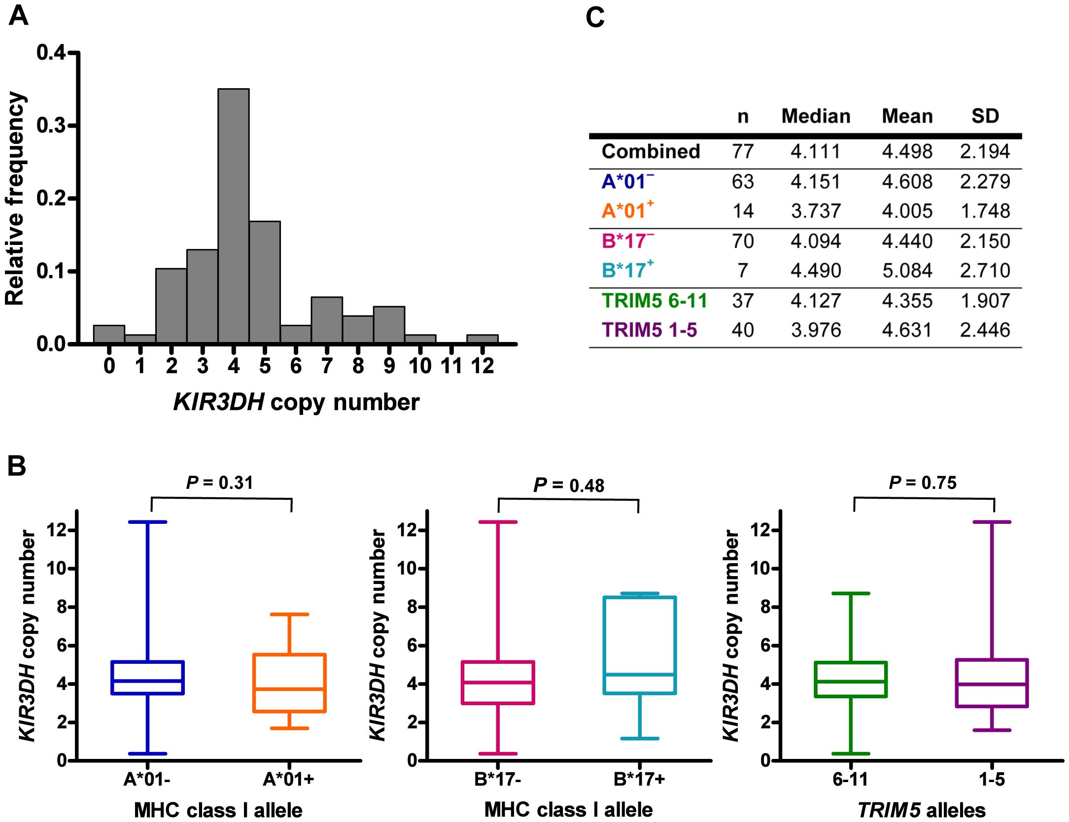 Distribution of <i>KIR3DH</i> copy numbers in Indian-origin rhesus monkeys.