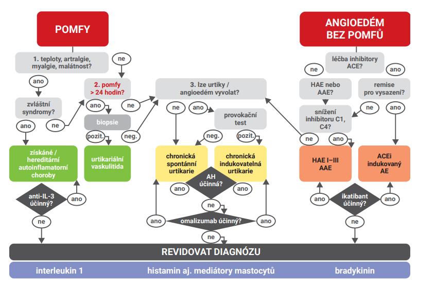 Diagnostický algoritmus (EAACI/GA2LEN/EDF/WAO) [11]