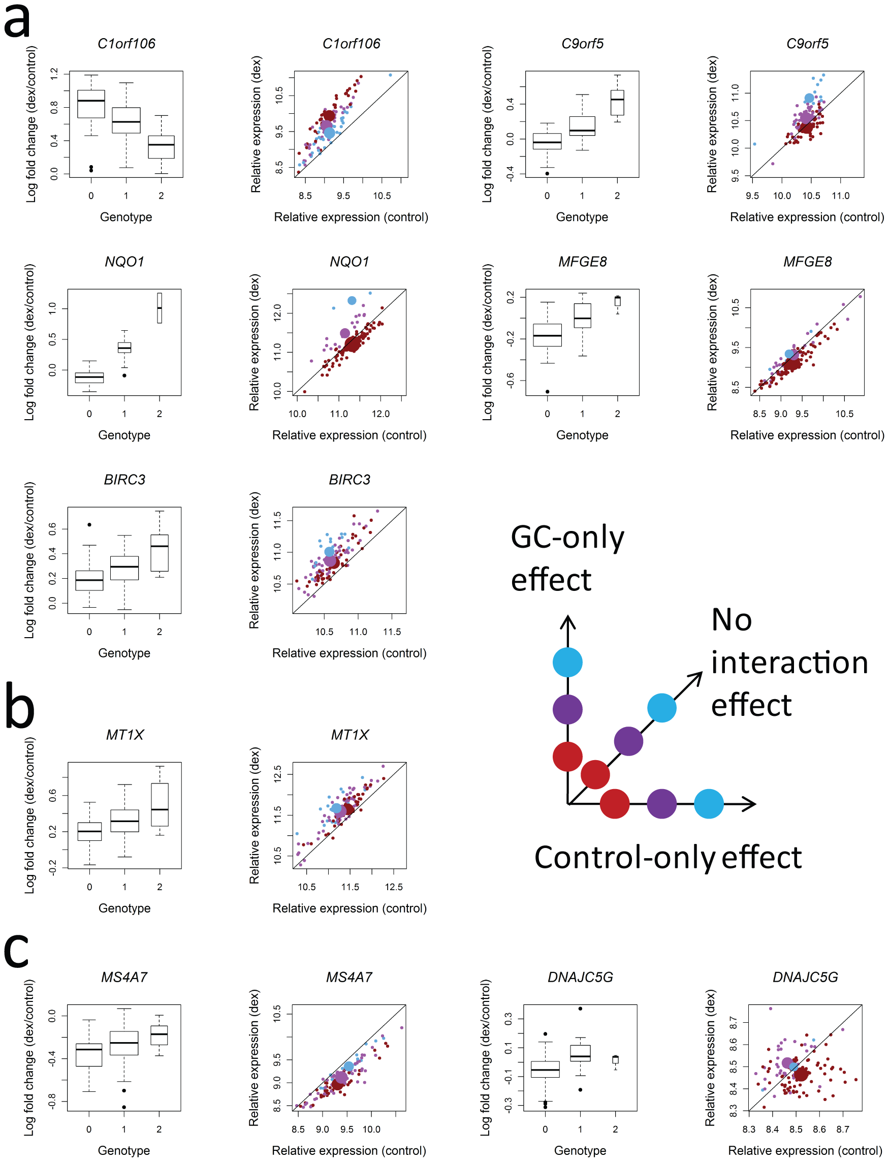 Patterns of interaction between genotype and GC treatment that underlie associations with log fold change for each of the 8 genes where log fold change is significantly associated with genotype at a SNP within 100 kb.