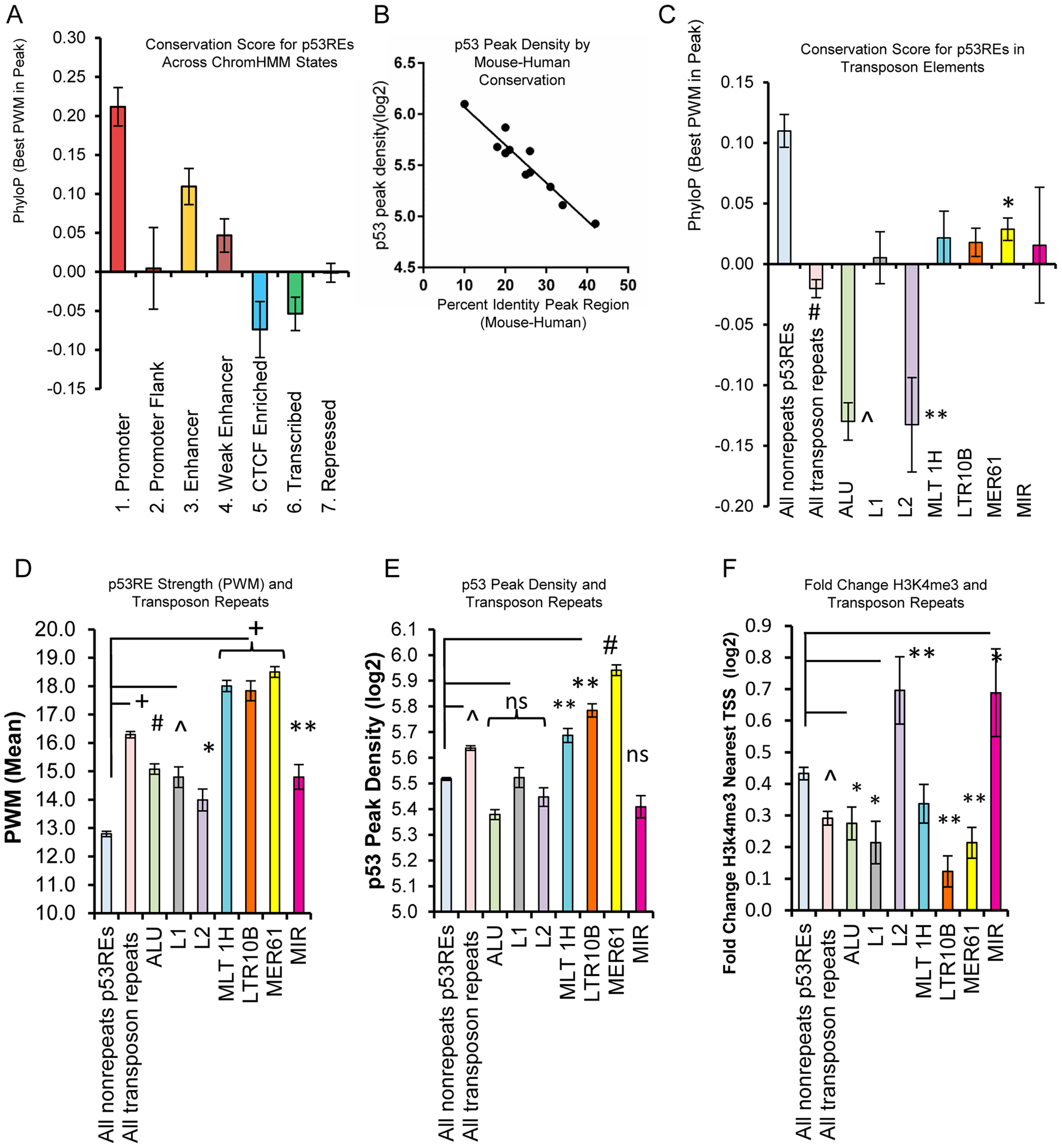 p53REs show diverse levels of conservation, occupancy, strength, and transactivation across chromatin states and among families of transposable elements.