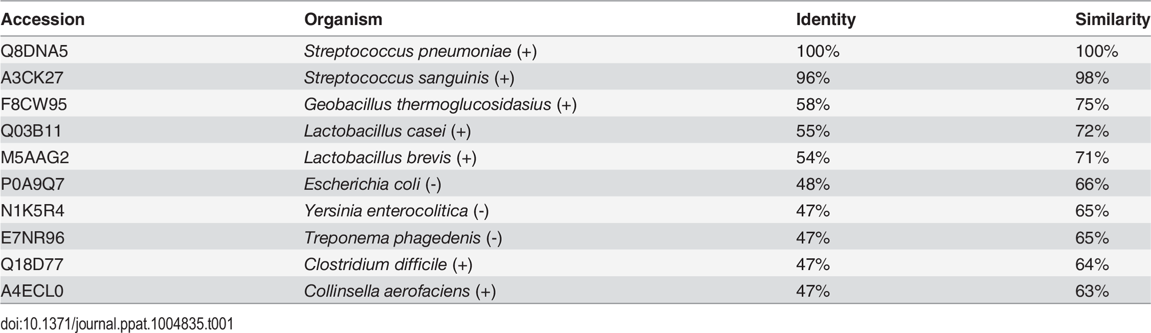 "AdhE sequence conservation in representative Gram-positive (+) and Gram-negative (-) species with confirmed spirosome formation [<em class=""ref"">19</em>–<em class=""ref"">26</em>]."