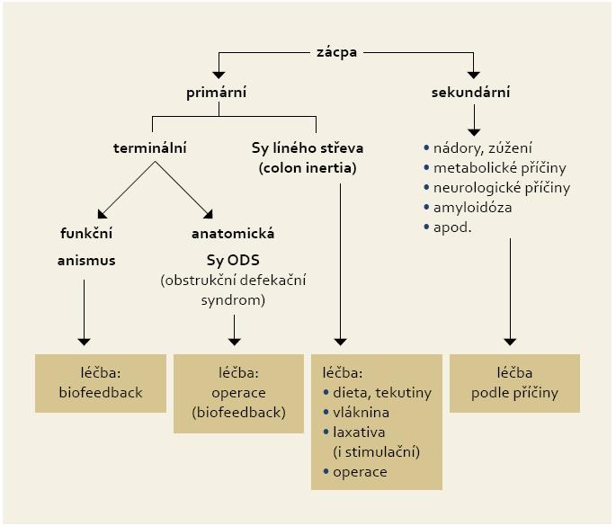 Třídění a principy léčby zácpy. Fig. 1. Constipation classification and principles of treatment.