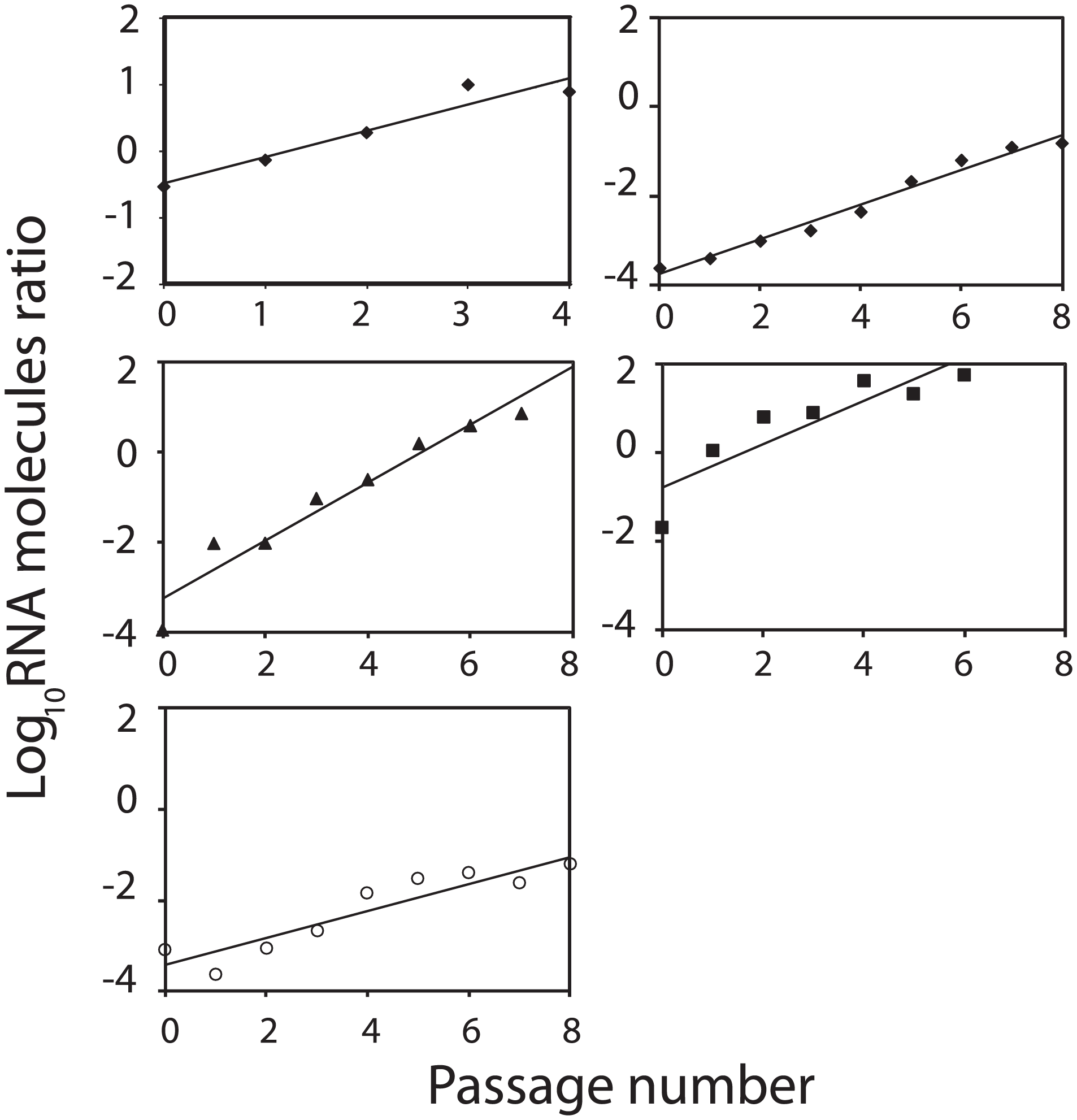 Growth-competition between FMDV mutants.