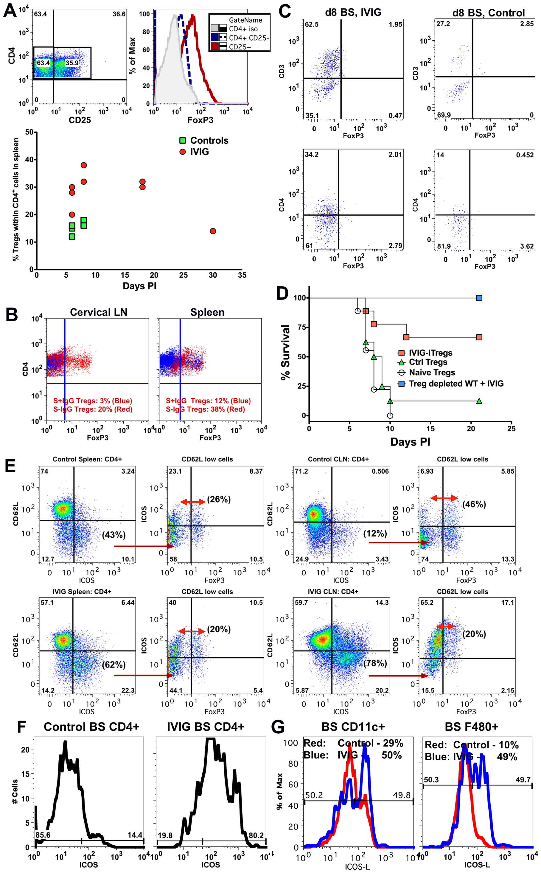 IVIG induced Tregs mediate but are not essential for anti-inflammatory effects in the CNS.