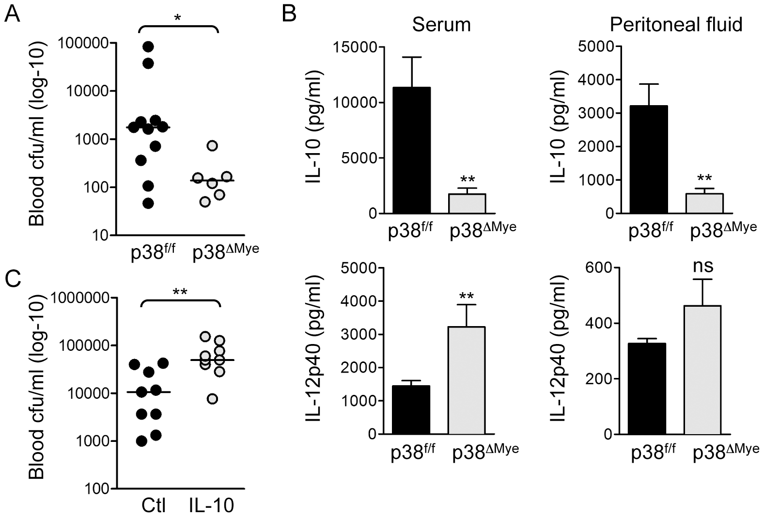 Targeted deletion of p38 in macrophages increases resistance to invasive GBS infection <i>in vivo</i>.