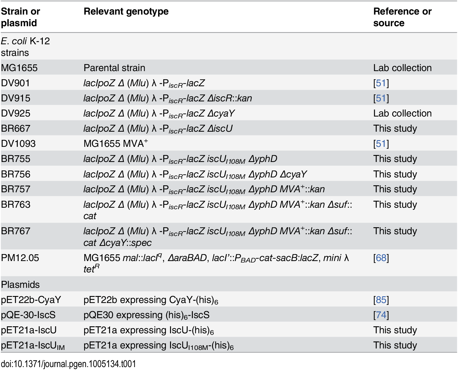 Bacterial strains and plasmids used in this study.