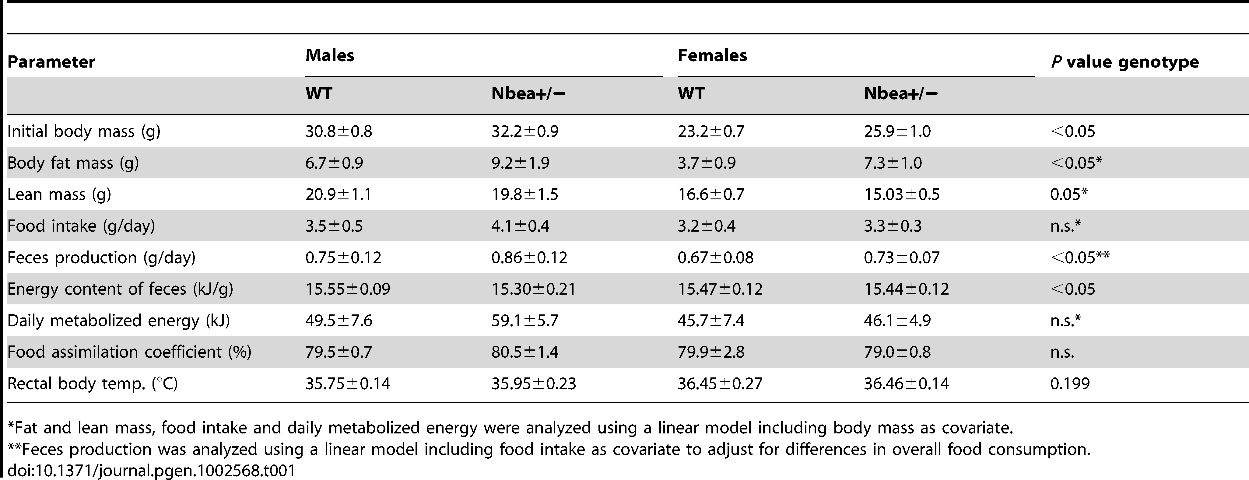 First-line phenotyping in the German Mouse Clinic: Body composition (DXA) and energy assimilation parameters of 18–20 week-old WT and <i>Nbea</i>+/− mice, fed with standard chow <i>ad libitum</i> over 5 days (n = 7/group for energy metabolism, n = 15/group for DXA; means±SD).